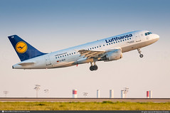 [CDG.2012] #Lufthansa #LH #Airbus #A319 #D-AILE #Kelsterbach #awp (CHRISTELER / AeroWorldpictures Team) Tags: airliner airlines lufthansa lh dlh germany european aircraft airplane plane avion compagnie airbus a319 a319114 cn627 engines cfmi cfm56 daile kelsterbach named davyo hamburg xfw spotting planespotting paris cdg lfpg charlesdegaulle airport roissy france spotter christeler aviation aeroworldpictures avgeek photo pictures nikon d300s nef raw lightroom nikkor 70300vr