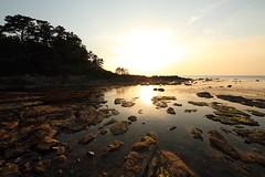 Sunset (Teruhide Tomori) Tags: sun sunset japan japon tango kyotango sea clouds landscape kyoto taiza 太陽 夕陽 夕日 夕焼け 空 sky 風景 日本 丹後半島 京丹後 丹後 海 日本海 京都 日没