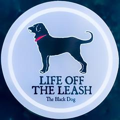 Life Off the Leash (Timothy Valentine) Tags: dog sticker logo home 2019 0519 squaredcircle eastbridgewater massachusetts unitedstatesofamerica