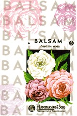 Postcrossing US-6009383 (booboo_babies) Tags: flowers seedpacket pink white balsam balsamflowers california sacramentocalifornia sacramento
