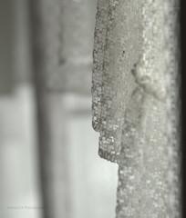 Vergessene Welten (bretschneider.jens) Tags: abandoned abandonedphotography abandonedplaces abandonedworld bröckelnderputz canoneos forgottenplaces lostplace lostplaces lostplacesgermany lostworld marode rottenplaces urbanexploration urbanexplorer urbex urbexgermany urbexpeople urbexphotography urbexworld vergessen verlassen verlasseneorte verlasseneortedeutschland