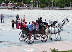 PRIMAVERA EN SEVILLA (ANDALUCÍA/ESPAÑA/SPAIN) (DAGM4) Tags: sevilla 2019 andalucía españa europa europe espagne espanha espagna espana espanya espainia spain spanien horse caballos feriadesevilla