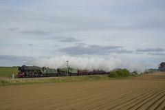 60103 + 61306 1Z72 (MitchellTurnbull) Tags: lner london north eastern railway 61306 mayflower b1 60103 flyingscotsman flying scotsman steam train locomotive double header ecml nikon d3200 railtour railways photgraphy