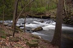 Irondequoit Creek Spring Run (+David+) Tags: rapids channingphilbrick park linearpark spring