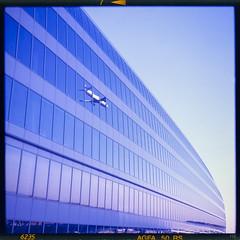 window p(l)ane (*altglas*) Tags: thesquaire airport frankfurt mirror plane airplane reflection windows facade architecture modern blue mediumformat 6x6 color agfa50rs expired expiredfilm analog film superikonta zeiss