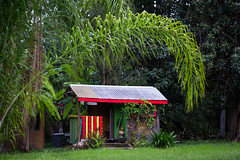 Colorful Cabin under a Palm Frond at the Rainbow Retreat in Nimbin (do_japan) Tags: nimbin australia new south wales alternative architecture art building bush cabin camp colorful community countryside forest frond garden grass green landmark landscape local nature newsouthwales old outback outdoor palm porch progressive rainbow retreat roof rural rustic sign sustainable tourism travel tree village wood