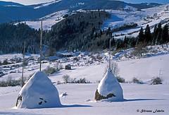 C'era una volta... (silvano fabris) Tags: canon photonature natura paesaggioinvernale snow winter landscape paesaggio