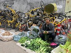 Lettuce Seller (cowyeow) Tags: man old oldman market streetmarket food china funnychina asia asian guangdong guangzhou