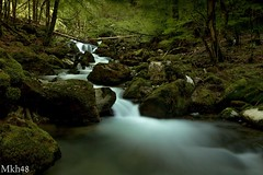 Les pieds dans le Bronze (paul.porral) Tags: flickr ngc paysage sauvage water waterfall landscape green nature longexposure poselongue rochers torrent naturephotography countryside outside