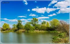 Τοπίο στη Γαλήνη (Spiros Tsoukias) Tags: hellas macedonia thessaloniki greece axiosdelta nationalpark flamingo ελλάδα μακεδονία θεσσαλονίκη καλοχώρι γαλλικόσ αξιόσ λουδίασ αλιάκμονασ εθνικόπάρκο δέλτααξιού υδρόβιαπτηνά φλαμίνγκο φοινικόπτερα ερωδιοί αργυροπελεκάνοι αργυροτσικνιάδεσ λευκοτσικνιάδεσ βαρβάρεσ γεράκια πάπιεσ φαλαρίδεσ κύκνοσ κύκνοι πελεκάνοσ κορμοράνοσ στρειδοφαγοσ κοκκινοσκέλησ σταχτοτσικνιάσ ποταμογλάρονα χουλιαρομύτα γλάροσ αβοκέτα καλαμοκανάσ λίμνεσ φύση ποτάμια θάλασσα βουνά πεδιάδεσ ηλιοβασίλεμα ανατολήηλίου πουλιά ζώα lakes nature rivers sea mountains plains sunset sunrise birds animals εχέδωροσ ποταμοί λιμνοθάλασσεσ
