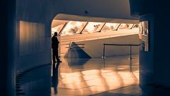 Rio; Museum Of Tomorrow (drasphotography) Tags: rio de janeiro brazil twotone two tone architecture architektur drasphotography silhouette travelphotography museum museu do amanhã