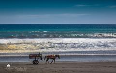 Costa-Rica - Beach (petraherdlitschke) Tags: costarica tropical naturephotography namibia strand beach canon outdoors