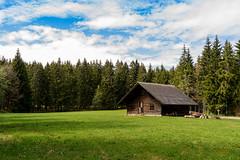 Wittemle-Hütte bei St. Blasien