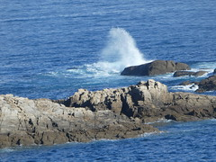 P1090366 (jesust793) Tags: mar sea olas rocas azul agua water