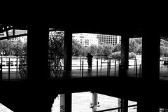 Looking at the Seine (pascalcolin1) Tags: paris13 homme man seine river rivière lumière light ombre shadow colonnes columns eau water photoderue streetview urbanarte noiretblanc blackandwhite photopascalcolin 50mm canon50mm canon