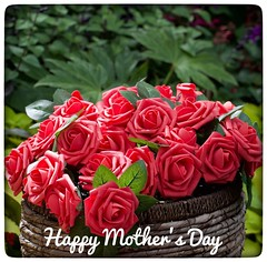 Mother's Day (vui.la9) Tags: