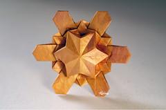 Star Robin (talina_78) Tags: origami hexagon star robin