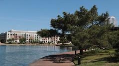 Lakeside Luxury (zeesstof) Tags: zeesstof businesstrip timeoff irving texas lascolinas dallassuburbs lake lakecarolyn lakesidewalk
