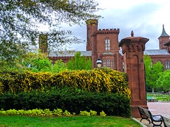 yellow fence (ekelly80) Tags: dc washingtondc april2019 spring garden enidahauptgarden smithsonian castle yellow flowers green fence gate grass