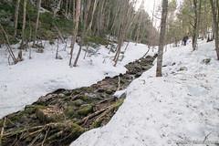 Chikuma (Shinano) River (takashi_matsumura) Tags: chikuma shinano river kawakami nagano ngc japan nikon d5300 千曲川 信濃川 雪 snow afp dx nikkor 1020mm f4556g vr
