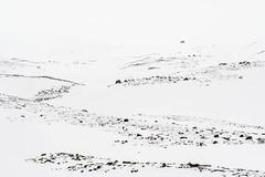 Season change I (Fjällkantsbon) Tags: doroteakommun sverige klöverdalenmedomgivningar lappland borgafjäll vårvinter evamårtensson västerbottenslän sapmi lapland springwinter minimalism graphic platser årstider