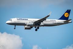 LHR: 11-May-2019 (mark50d) Tags: nikond850 sigma60600mmossport heathrowairport lhr londonheathrow britishalways b747 heathrow airport