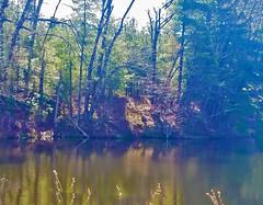 Reflections - Lake Singletary (RockN) Tags: lakesingletary april2019 reflection sutton massachusetts newengland