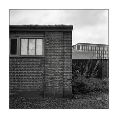Brick house by the harbour (K.Pihl) Tags: rolleiflex35e monochrome aarhushouse kodaktmax100 planar75mmrolleiflex rodinal1100 blackwhite schwarzweiss bw pellicolaanalogica analog film