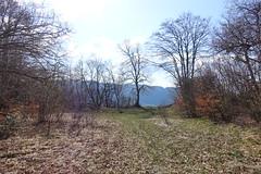 Hike around Pointe de Chenevier (*_*) Tags: bornes 2019 printemps spring april pointedechenevier sourcesdulacdannecy savoie europe france hautesavoie 74 annecy hiking mountain montagne nature randonnee walk marche montmin