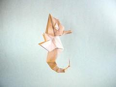 Seahorse - Ryan Dong (Rui.Roda) Tags: origami papiroflexia cavalo marinho hippocampus seahorse ryan dong