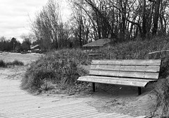 May 10 bench with a view (Basildon Kitchens) Tags: spring wellington princeedwardcounty wellingtonbeach bench beach blackwhite