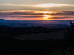 Sunset in the Willamette Valley (Blue Prince Photography) Tags: sunset silverfallsstatepark silverfalls oregon color colors pink sky purple blue landscape tree silhouette overlook scenery eyecandy pnw pacnorwest pacificnorthwest cascadia olympus omd olympusomdem10iii mirrorless