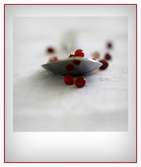 Full . . . HMM (nickylechatreux) Tags: spoonfull spoon macro macromonday hmm épices rouge