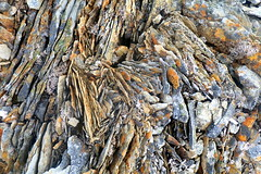 Rhyolite (hó) Tags: rhyolite líparít rock geology mælifell snæfellsnes iceland colours colors nature abstract lichen may 2019