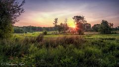 Meeting the dawn (kud4ipad) Tags: 2018 hdr prokhorovka ukraine aurora downing landscape medow morning sun прохоровка