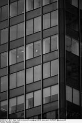 2018-12-31 4011 New York in monochrome (Badger 23 / jezevec) Tags: new york newyork newyorkcity ኒውዮርክከተማ نيويورك ܢܝܘܝܘܪܩ নিউইয়র্কসিটি ньюйорк горадньюёрк ньюёрк nuevayork нюйорк ནེའུ་ཡོར་ཀ། ньюйоркхото çĕнĕйорк dinasefrognewydd neiyarrickschtadt νέαυόρκη ньюйоркбалһсн 뉴욕 նյույորք न्यूयॉर्कनगर tchiaqyorkiniqpak ניויורק ನ್ಯೂಯಾರ್ಕ್ನಗರ ნიუიორკი evreknowydh ņujorka niujorkas њујорк ന്യൂയോർക്ക്നഗരം न्यूयॉर्कशहर ньюйоркхот āltepētlyancuīcyork न्यूयोर्कशहर ニューヨーク ਨਿਊਯਾਰਕਸ਼ਹਿਰ نیویارکشہر ទីក្រុងញូវយ៉ក niuyoksiti nowyjork न्यूयार्क نیویۆرک நியூயார்க்நகரம் న్యూయార్క్ นครนิวยอร์ก nýuýorkşäheri thànhphốnewyork 紐約市 纽约市 ניויארק 纽约
