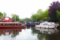 Mirfield Marina   (Mirfield canal)  May 2019 (dave_attrill) Tags: marina barges barge moored mirfield canal waterway calder caldernavigation westyorkshire huddersfield yorkshire kirklees westriding may 2019
