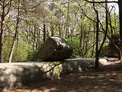 Le Billard - Sidobre (Iris@photos) Tags: france occitanie tarn sidobre forêt granit pierre printemps