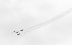 USAF Thunderbirds (ep_jhu) Tags: xt3 andrewsafb aircraft airplane flying formation fujifilm falcon airforce thunderbirds jointbase bw andrewsairforcebase legendsinflight military airshow f16 acros 2019 usaf fuji andrewsfield maryland unitedstatesofamerica