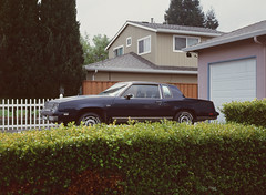 Sunnyvale, California (bior) Tags: pentax645nii pentax645 6x45cm ektachrome e200 kodakektachrome slidefilm mediumformat 120 sunnyvale street rain suburbs house driveway car hedge