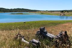 Alqueva - Alentejo - Portugal (Capturedbyhunter) Tags: fernando caçador marques alqueva alentejo portugal landscape waterscape paisagem pentaxart manual focus focagem foco