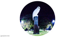 The Owl Statue on Tuesday morning (garydlum) Tags: owlstatue publicart canberra australiancapitalterritory australia