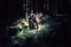 133/365 - lost in the woods
