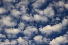 O avião e a lua (Zéza Lemos) Tags: avião aviões lua natur natureza nuvens canon capture céu ciel quarteira quebramar algarve água portugal praia viagens turismo férias