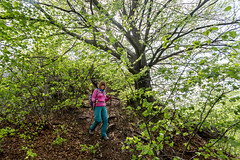 Tree (piotr_szymanek) Tags: rzedkowice outdoor landscape tree forest marzka portrait pink woman milf green 1k 5k 20f 10k