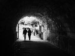Hyde Park, London 2019 (Maruf Ilahi Partho) Tags: bw bnw monochrome blackandwhite 35mmlens x100f fujifilnx100f fujifilmglobal fujifilm londonhydepark hydepark hydeparklondon uk gb london travelphotography lifeisstreet londonstreetphoto streetphotography