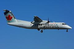 C-GTAG (Air Canada express - JAZZ) (Steelhead 2010) Tags: aircanada aircanadaexpress jazz bombardier dehavillandcanada dhc8 dhc8300 dash8 creg cgtag