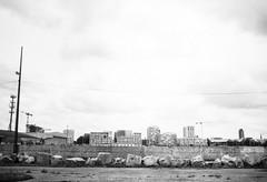Horizon 2 (herbdolphy) Tags: analog analogique argentique pellicule 35mm film pentax pentaxmx fomapan 400 filmisnotdead filmphotography blackwhite noiretblanc