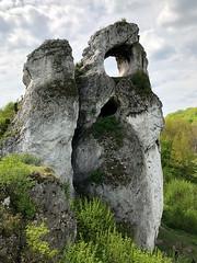 Window (piotr_szymanek) Tags: outdoor landscape tree forest green rock clouds 1k 20f 50f 5k