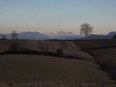 24/12/2013 les Pyrénées vues du Tépé, Figarol (Dust.....) Tags: figarol letépé pyrénées